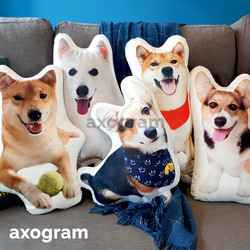 Customized 3D Pet Pillow Cushion