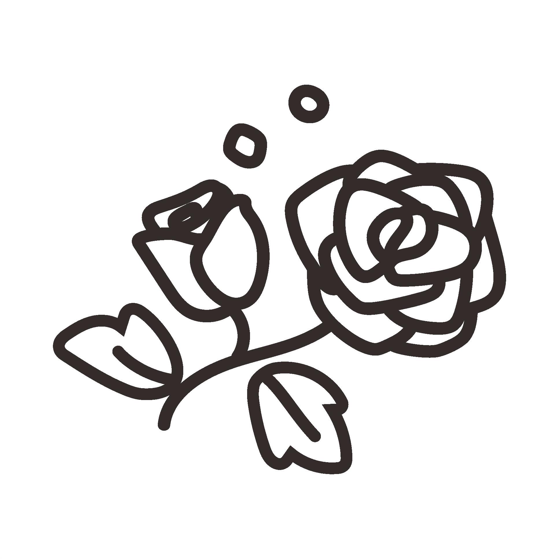 CA1_rose