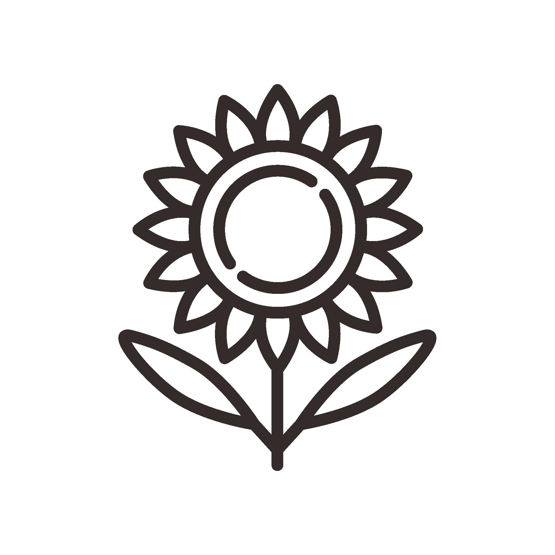 CA9_sunflower